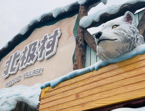 萌度超标 北极狐安家成都海昌极地海洋公园