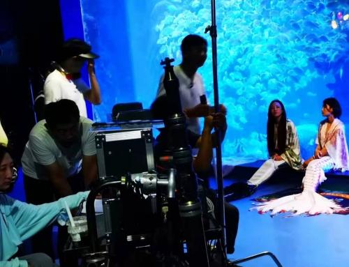 """电影《海洋传奇》在青岛海昌极地海洋公园""""杀青"""""""