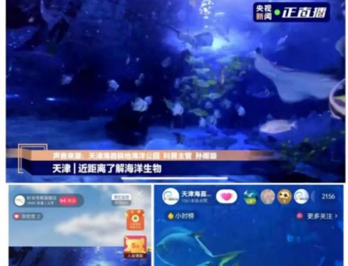 天津海昌首届水下时装秀 实现全程水下直播 496万人次尽享海底视觉盛宴