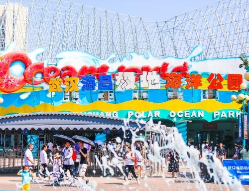 品质为优、服务为上,武汉海昌用心打造欢乐假期